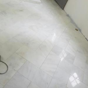 Chevron Marble floors